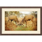 "Amanti Art Framed Art Print Unyielding (Deer) by Joe Reynolds 39""W x 27""H Frame Rustic Wood (DSW3909373)"