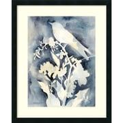 """Amanti Art Framed Art Print Hedgerow I (Bird) by Chariklia Zarris 26""""W x 32""""H, Satin Black Frame (DSW3909382)"""