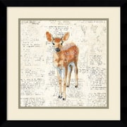 "Amanti Art Framed Art Print Into the Woods III no Border (Deer) by Emily Adams 17""W x 17""H Frame Satin Black (DSW3909691)"