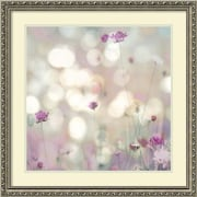 "Amanti Art Framed Art Print Floral Meadow I (Floral) by Kate Carrigan 27""W x 27""H, Frame Silver (DSW3910583)"