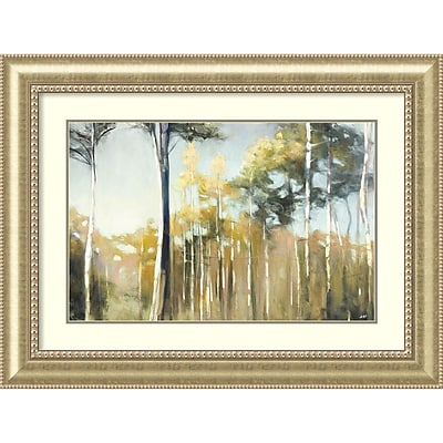 Amanti Art Framed Art Print Aspen Reverieby Julia Purinton 45