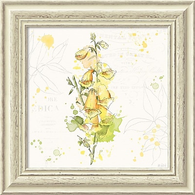 """""Amanti Art Framed Art Print Floral Splash IV by Katie Pertiet 19""""""""W x 19""""""""H, Frame White (DSW3910648)"""""" 24010644"