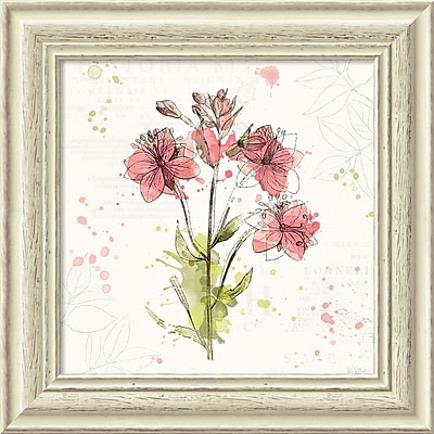 """""Amanti Art Framed Art Print Floral Splash V by Katie Pertiet 19""""""""W x 19""""""""H, Frame White (DSW3910649)"""""" 24010909"