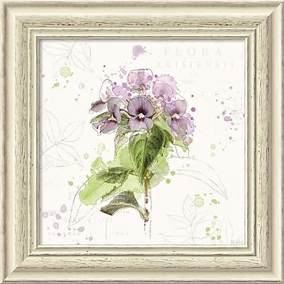 """""Amanti Art Framed Art Print Floral Splash III by Katie Pertiet 19""""""""W x 19""""""""H, Frame White (DSW3910650)"""""" 24011041"