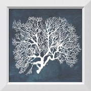 "Amanti Art Framed Art Print Inverse Sea Fan III  by Grace Popp 21""W x 21""H, Frame White (DSW3910657)"
