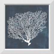 "Amanti Art Framed Art Print Inverse Sea Fan II by Grace Popp  21""W x 21 ""H, Frame White (DSW3910658)"
