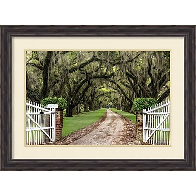 Amanti Art Framed Art Print Plantation Road by Daniel Burt 31