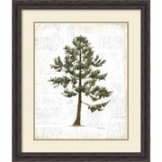 "Amanti Art Framed Art Print Into the Woods Trees I by Emily Adams 27""W x 32""H, Frame Rustic Pine (DSW3926487)"
