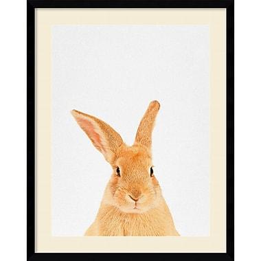Amanti Art Framed Art Print Rabbit by Tai Prints 23