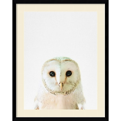"""""Amanti Art Framed Art Print Owl by Tai Prints 23""""""""W x 29""""""""H Frame Satin Black (DSW3926506)"""""" 24011087"