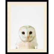 "Amanti Art Framed Art Print Owl by Tai Prints 23""W x 29""H Frame Satin Black (DSW3926506)"