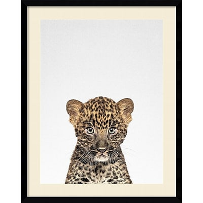 """""Amanti Art Framed Art Print Leopard by Tai Prints 23""""""""W x 29""""""""H Frame Satin Black (DSW3926507)"""""" 24010686"
