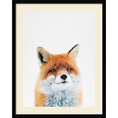 """""Amanti Art Framed Art Print Fox by Tai Prints 23""""""""W x 29""""""""H Frame Satin Black (DSW3926508)"""""" 24010928"