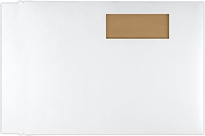 LUX 9 1/2 x 12 1/2 Window Paperboard Mailers 50/Pack, White (84477WIN-50)