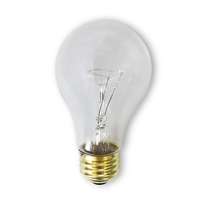 Bulbrite Incandescent (INC) A19 40W Dimmable Rough Service Clear 2700K Warm White Light Bulb, 24 Pack (107240)