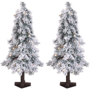 Fraser Hill Farm Set of Two 3-Ft. Snowy Alpine Trees with Clear Lights (FFSA030-1SNSET2)