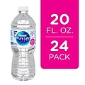 Nestle Pure Life Purified Water, 20 Fl oz. Plastic Bottled Water (Case Of 24), 24/Carton (12255068)