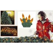 Sienna 4' x 6' Amber Mini Net Style Christmas Lights - Green Wire (25234372)