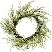 """Northlight 12"""" Green and Brown Decorative Berry Artificial Spring Twig Wreath - Unlit (31812492)"""