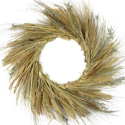 """Northlight 22"""" Autumn Harvest Wheat  Grass and Grapevine Thanksgiving Fall Wreath - Unlit (31738018)"""