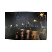 "Northlight LED Lighted Nighttime City Park Scene Canvas Wall Art 15.75"" x 23.75"" (31535392)"