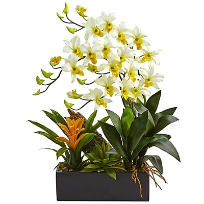 Nearly Natural Dendrobium and Bromeliad Arrangement (1470-CR)