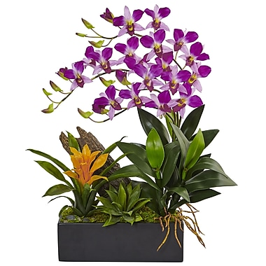 Nearly Natural Dendrobium and Bromeliad Arrangement (1470-PP)