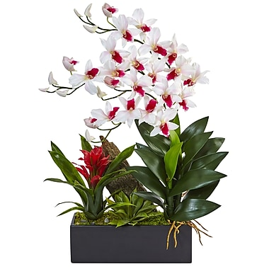 Nearly Natural Dendrobium and Bromeliad Arrangement (1470-WH)