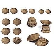 Edx Education Tactile Shells, Set of 36 (CTU15205)
