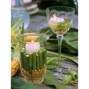 "Northlight LED Lighted Spring Bamboo Candle in Vase Canvas Wall Art 15.75"" x 11.75"" (32041019)"