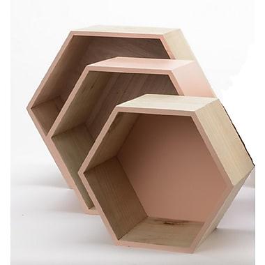 Kaemingk Set of 3 Basic Luxury Hexagonal Shadow Boxes with Peach Accents 11.5 - 15.5
