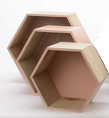 Kaemingk Set of 3 Basic Luxury Hexagonal Shadow Boxes with Peach Accents 11.5 - 15.5