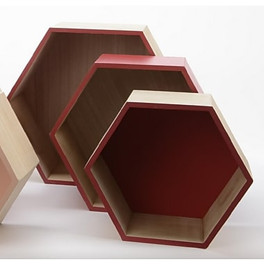 Kaemingk Set of 3 Basic Luxury Hexagonal Shadow Boxes with Rose Red Accents 11.5 - 15.5