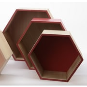 """Kaemingk Set of 3 Basic Luxury Hexagonal Shadow Boxes with Rose Red Accents 11.5 - 15.5"""" (31535441)"""