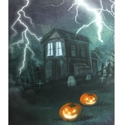 "Northlight LED Lighted Halloween Haunted House with Jack-O'-Lanterns Canvas Wall Art 23.5"" x 19.75"" (32256000)"