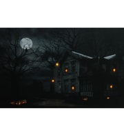 "Northlight LED Lighted Moonlit Halloween House with Jack-O'-Lanterns Canvas Wall Art 15.75"" x 19.5"" (32256393)"