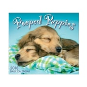 "2018 Sellers Publishing, Inc. 5"" x 6"" Pooped Puppies Boxed Daily Calendar (CB0258)"