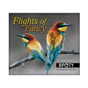 "2018 Sellers Publishing, Inc. 5"" x 6"" Flights Of Fancy Boxed Daily Calendar"