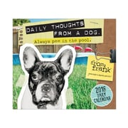 "2018 Sellers Publishing, Inc. 5"" x 6"" From Frank™: Daily Thoughts From A Dog Boxed Daily Calendar (CB0248)"
