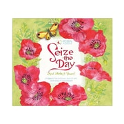 "2018 Sellers Publishing, Inc. 5"" x 6"" Seize The Day And Make It Yours Boxed Daily Calendar"