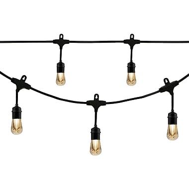 Enbrighten Cafe 35629 Vintage LED Café Lights (24ft; 12 Acrylic Bulbs)