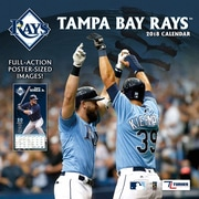 "Tampa Bay Rays 2018 12"" x 12"" Team Wall Calendar (18998011865)"