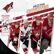"Arizona Coyotes 2018 12"" x 12"" Team Wall Calendar (18998011952)"