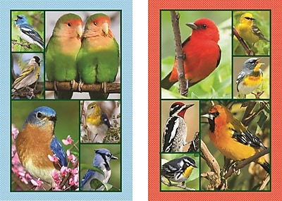 Springbok Puzzles Songbirds Bridge Jumbo Print Index Playing Cards (91-76026)
