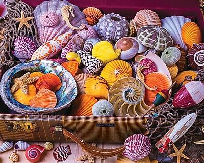 Springbok Puzzles Vacation Treasures 1500 Piece Jigsaw Puzzle (33-15500)