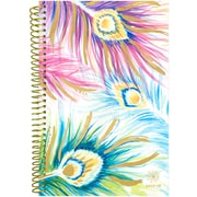 Bloom Daily Planners Peacock Feathers 2017-18 Academic Planner (X001C-AKM6Z)