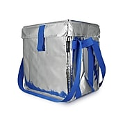 PACKiT Fresh Blue/Silver Polyester Tote, Large (PKF-UD-MAG)