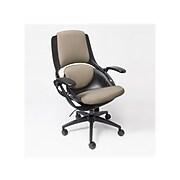 ALL33 BackStrong C1 Ergonomic Fabric Swivel Task Chair, Tan/Black (BS-BTF-50510)