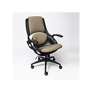 ALL33 BackStrong C1 Ergonomic Vegan Leather Swivel Task Chair, Tan/Black (BS-BTE-50506)