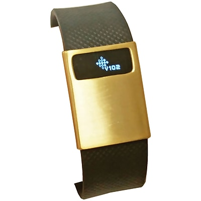 Funktional Wearables Basic Cover for Fitbit Charge/Charge HR, Brushed Gold (BASICCOVER-BRGLD)